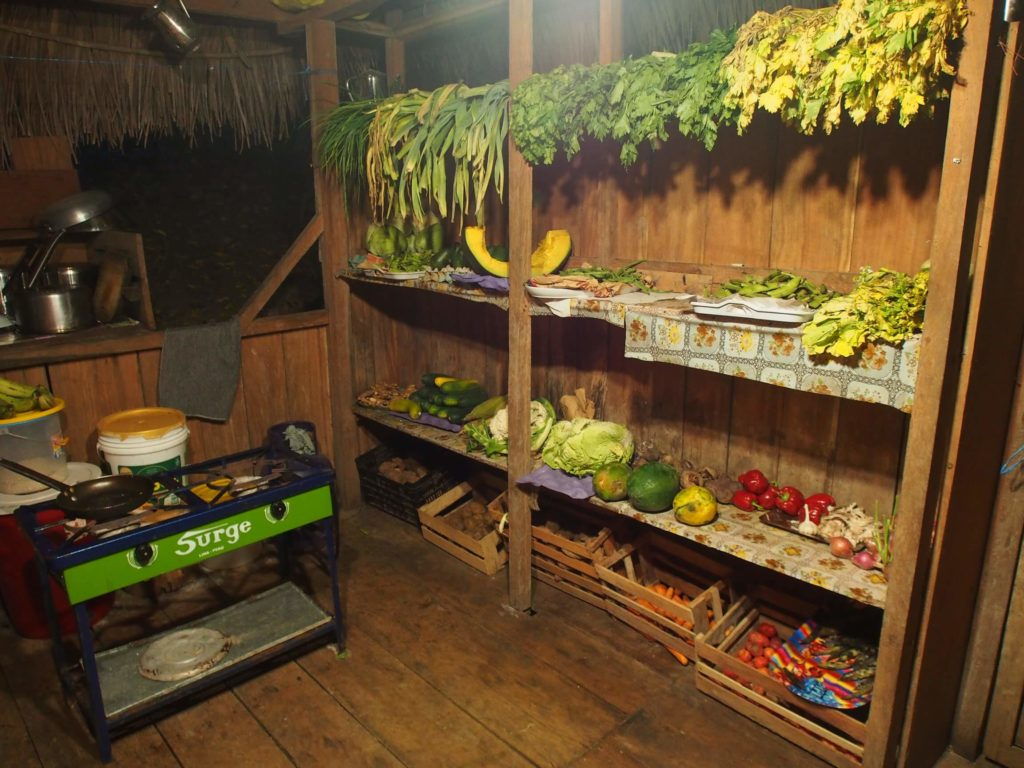 Santuario Huistin Ayahuasca Retreat: Pucallpa Peru