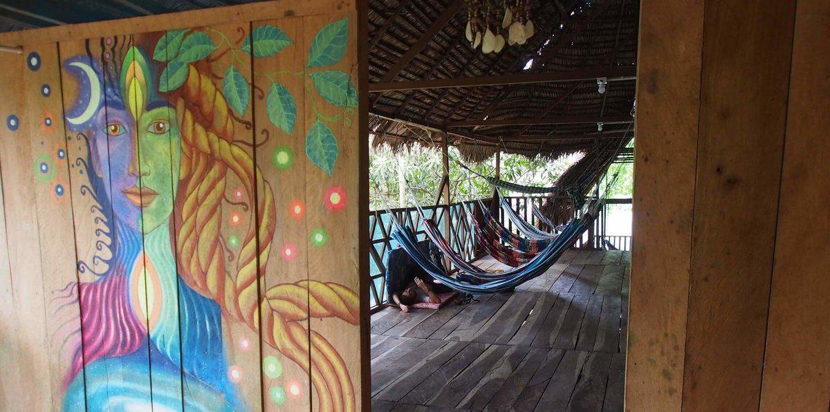 Ayahuasca Trip Experience: be humble and shit » Ayahuasca Easy