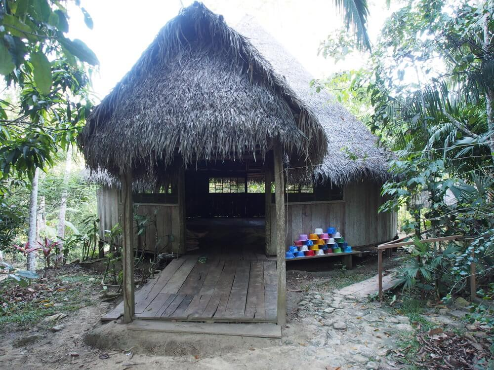 Affordable Ayahuasca retreat in Peru: $90USD p/day
